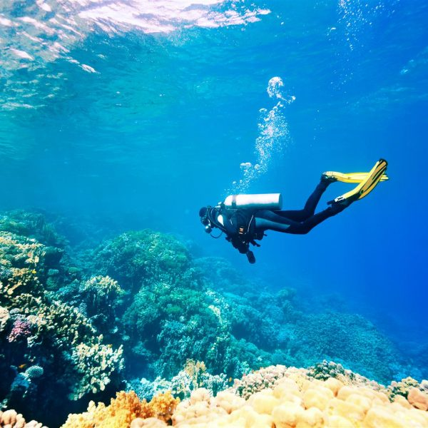 Scuba-Diving in Andaman Islands